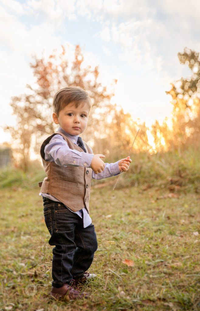 Photo session child with stick