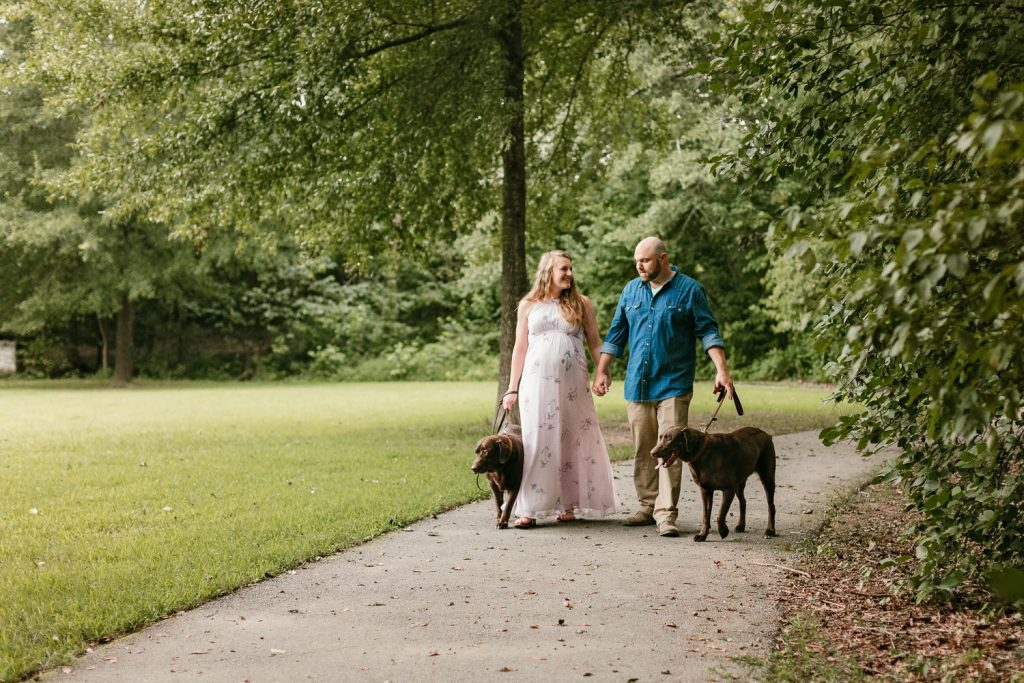 Expecting couple walking their chocolate labs in Roswell