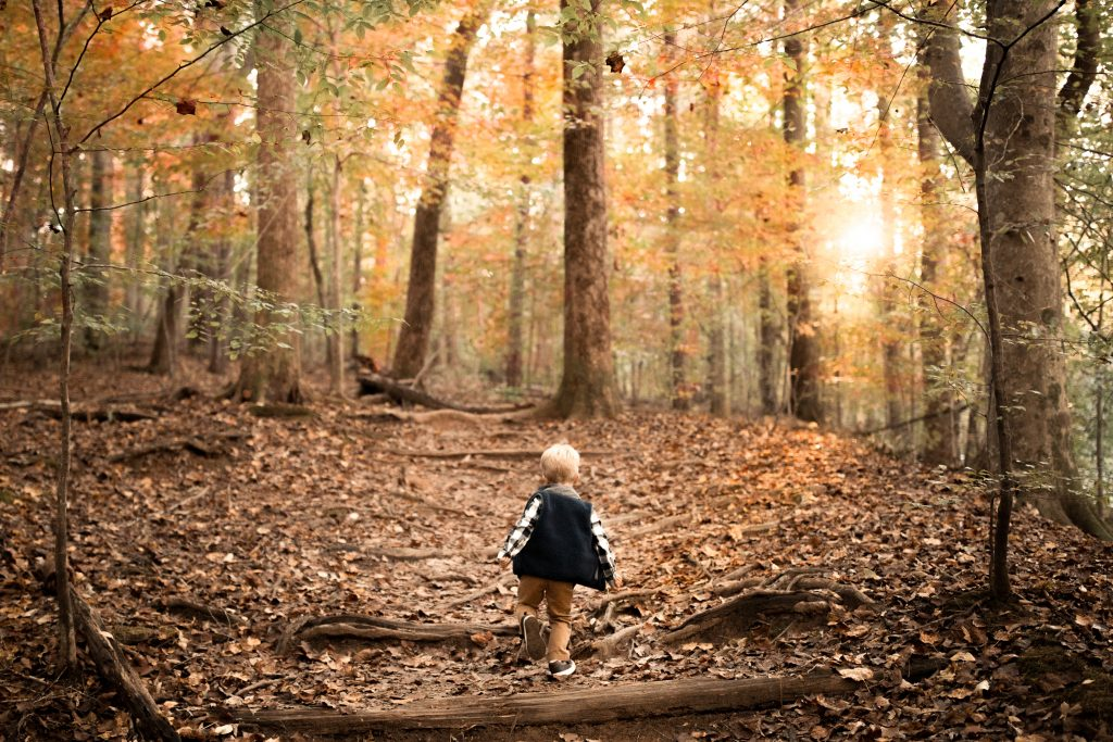 little hiker during his family photography in marietta session