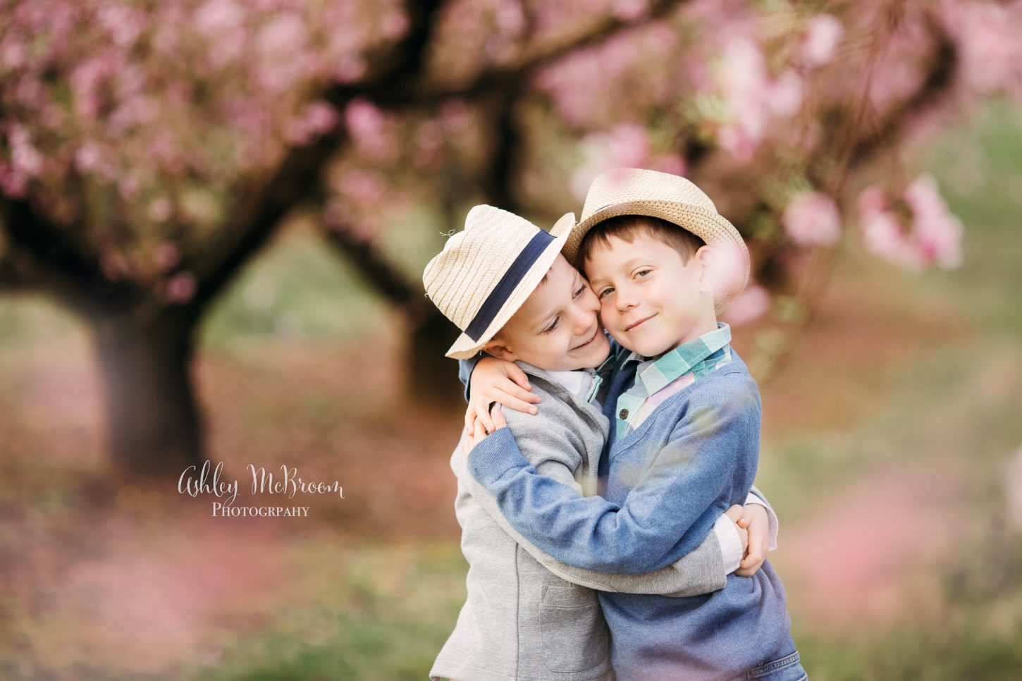 peach blossom mini sessions at Jaemor Farm