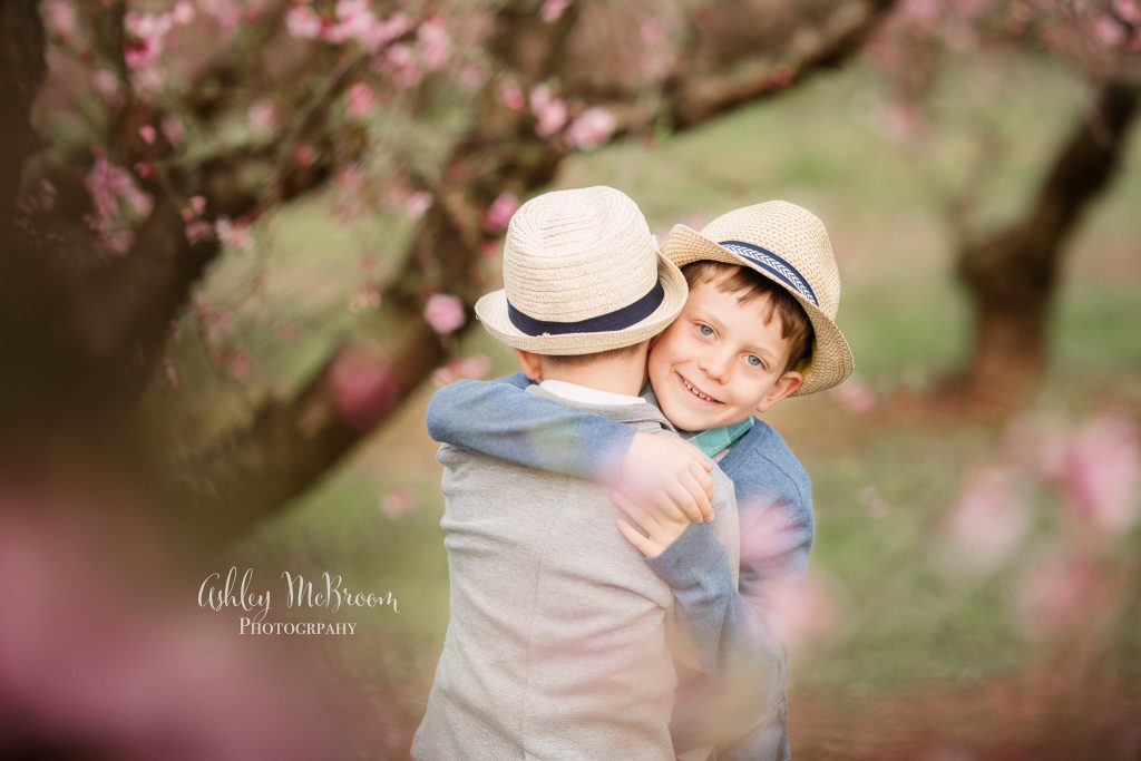 brothers during peach blossom mini sessions