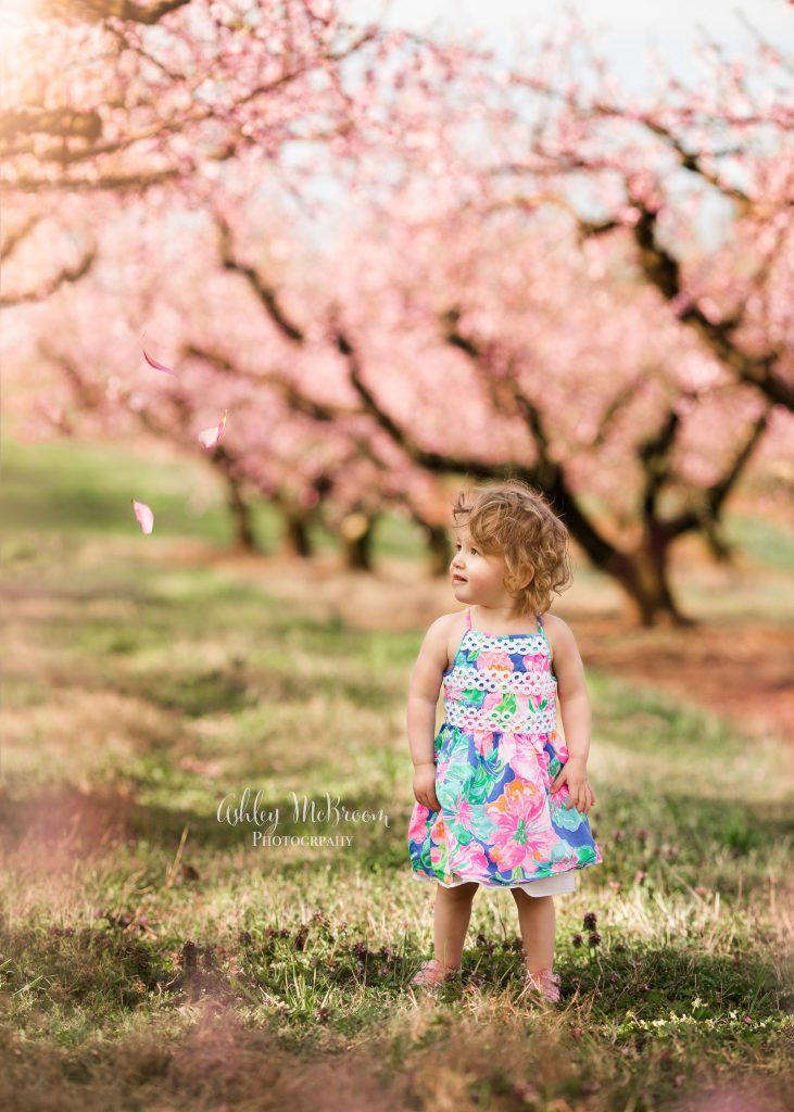 atlanta children's photographer