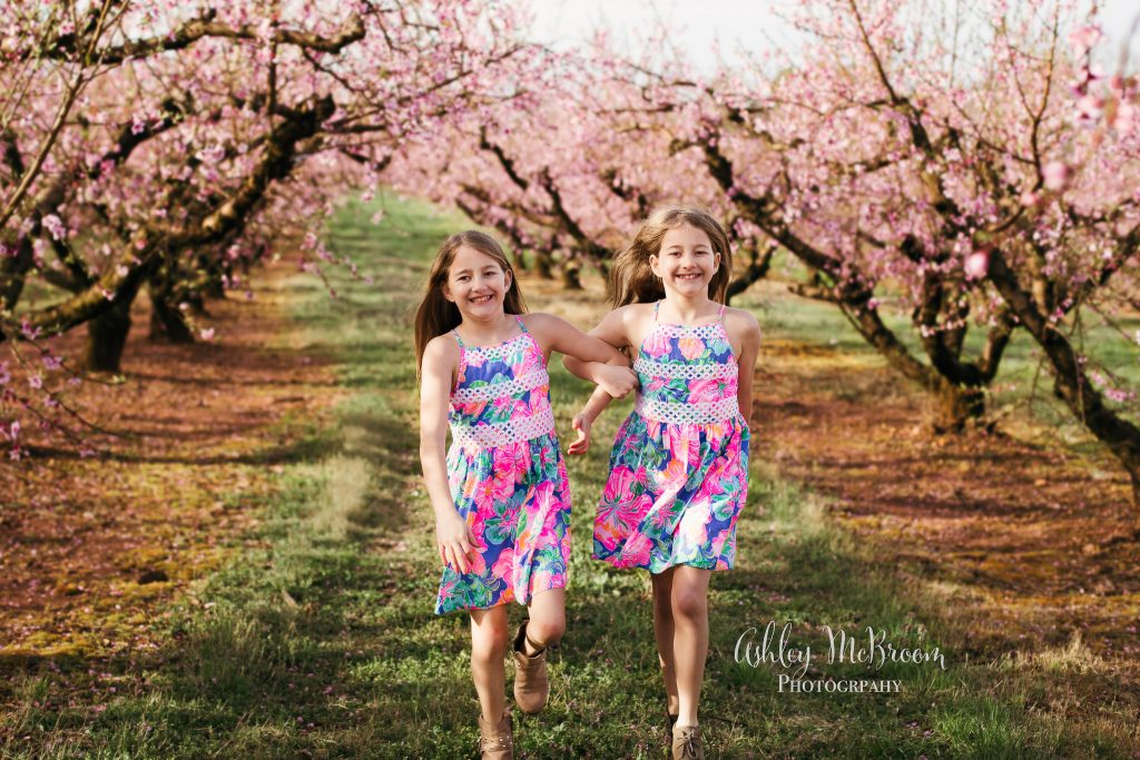 twin sisters in peach blossom minis